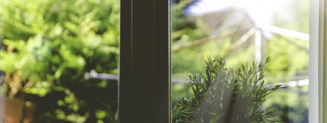 Poradnik: jak zamontować moskitierę w oknie?