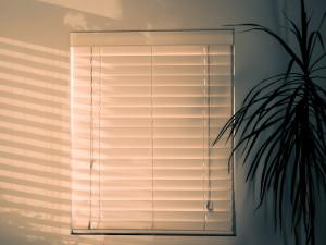 Rolety termiczne – jak ochronić dom przed upałem?